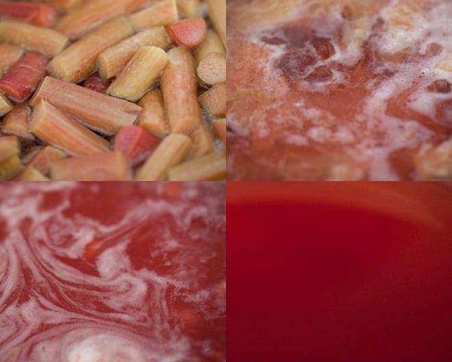 Rhubarb Ginger Soda
